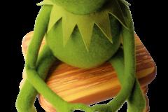 Kermit-stool
